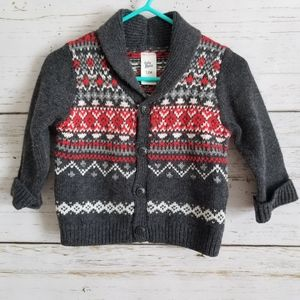 Knit Button Front Cardigan Sweater 12m